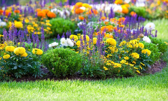 The Plant Station Greenhouse Inc. - Grand Chute: $20 for $40 Worth of Plants and Garden Accessories at The Plant Station Greenhouse Inc.