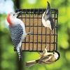 Bird Feeder and Suet Dough 11-Pack