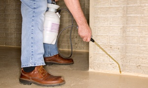 Moore 4 Less Pest Control: $75 for Household Extermination and Pest Removal from Moore 4 Less Pest Control ($200 Value)