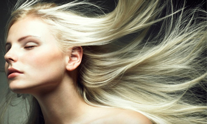 Vincent Palumbo Salon - Vincent Palumbo Salon: Haircut with Conditioning or Partial Highlights, or Keratin Treatment at Vincent Palumbo Salon (Up to 67% Off)