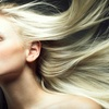 Up to 67% Off at Vincent Palumbo Salon