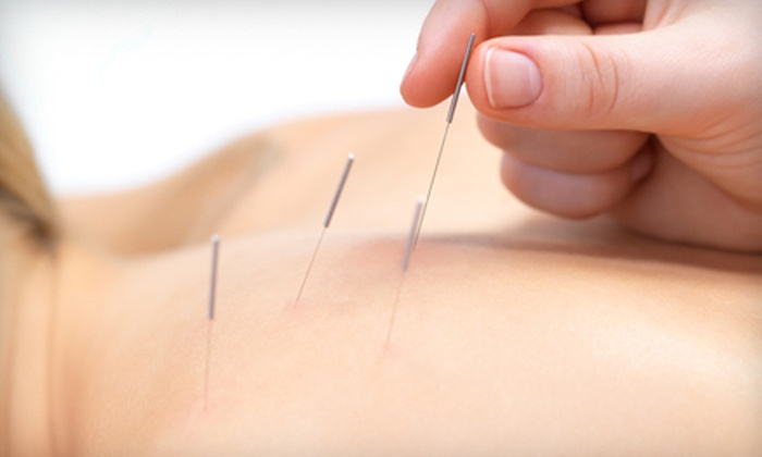 Master Lu's Health Center - South Salt Lake City: One or Three Acupuncture Consultations and Treatments at Master Lu's Health Center (Up to 61% Off)