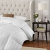 Up to 61% Off Down-Alternative Comforter