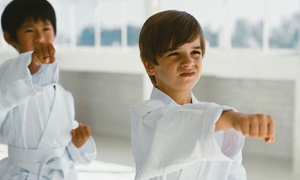 Columbia Martial Arts and Fitness: Four or Eight Kids' Martial-Arts Classes with Uniform at Columbia Martial Arts and Fitness (Up to 74% Off)