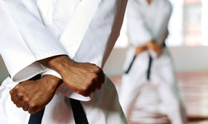 Kaikudo Martial Arts: Five Karate or Tai Chi Classes or One Month of Unlimited Classes at Kaikudo Martial Arts (78% Off)
