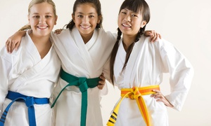 American Youn Wha Martial Arts: One or Two Months of Karate Classes at American Youn Wha Martial Arts (Up to 63% Off)