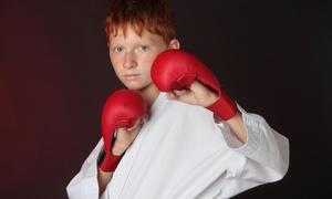 Kang's Taekwondo Academy: Four Weeks of Unlimited Martial Arts Classes at Kang's Taekwondo Academy (72% Off)