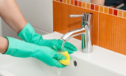 $9 for $18 Worth of Home-Cleaning Supplies — Professional Supply Company