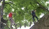 Kingsway Adventure Activities - Middleton In Teesdale: High Ropes Course from £12.50 at Kingsway Adventure Activities