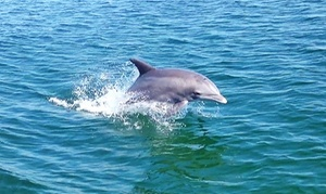 Premier Dolphin Cruise: $35 for Dolphin or Sunset Cruise for Two from Premier Dolphin Cruise ($60 Value)