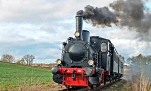 Eisenbahnfreunde Wetterau: 2,5 Std. Fahrt mit dem Museumszug für Erwachsene und Kinder inkl. Begrüßungsgetränk (bis zu 53% sparen*)