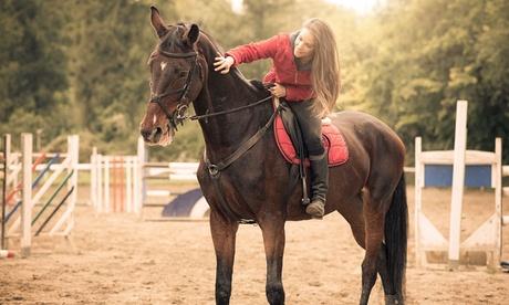 4, 8 o 12 clases de iniciación a la equitación desde 29,95 € en Club Hípico Lira Cubero