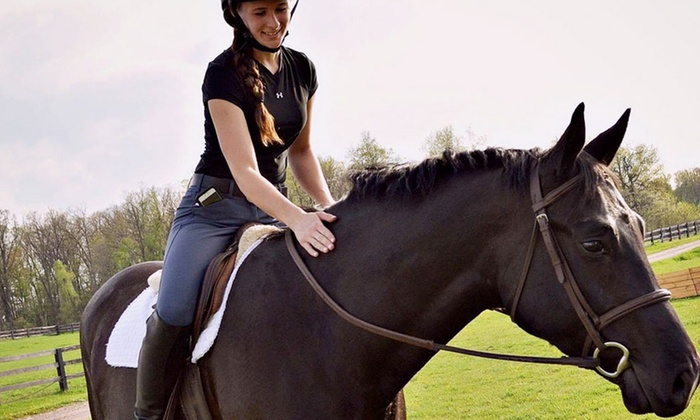 WestWood Farms LLC. - Oxford: One or Three Private, 60-Minute Horseback-Riding Lessons at WestWood Farms LLC (Up to 53% Off)