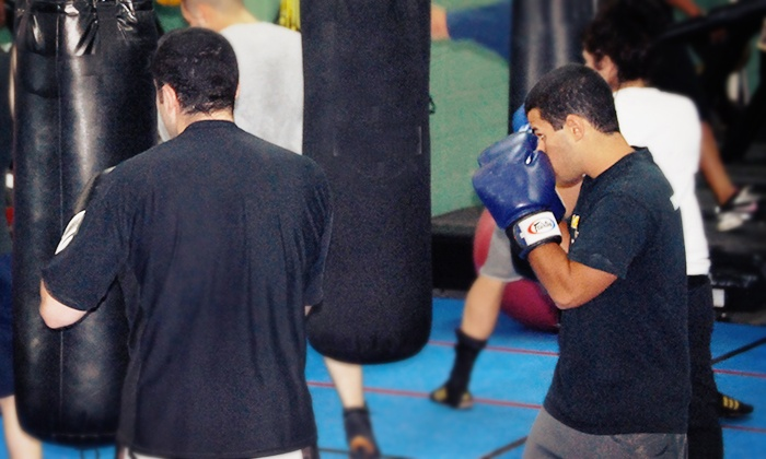 Champions Boxing Gym - South Itasca: Five or Ten Classes at Champions Boxing Gym (Up to 64% Off)
