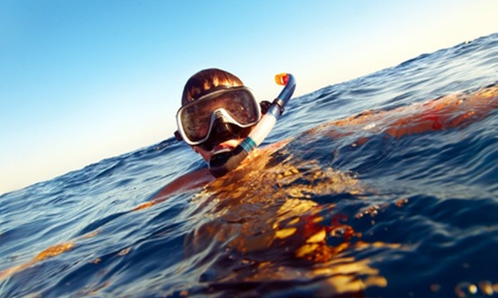Unified Team Diving - Torrey Preserve: Two- or Four-Day Kids' Snorkeling Camp from Unified Team Diving (Half Off)