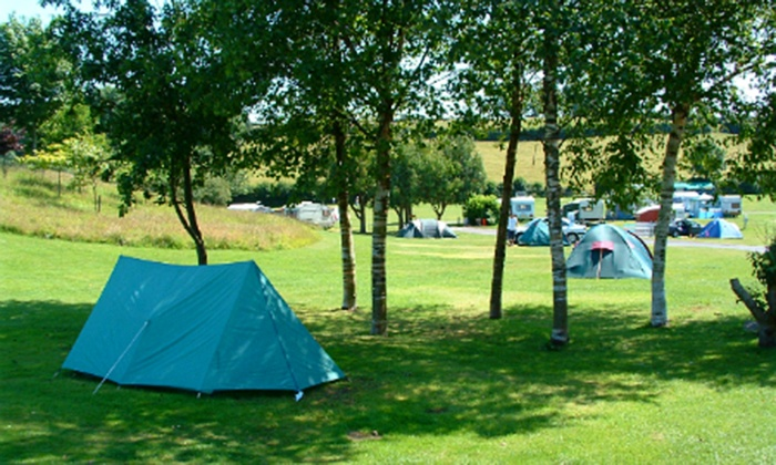 White Hill Country Park - Beverley Holidays: South Devon: 2 or 3 Night Camping Pitch For Up to Four from £12 at the Whitehill Country Park (Up to 79% Off)