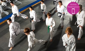 East Coast Tang Soo Do Karate Academy: $20 for Eight Korean Karate Classes Plus a Uniform at East Coast Tang Soo Do Karate Academy (Up to $200 Value)