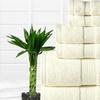6-Piece650 GSM Bamboo-Cotton Towel Set