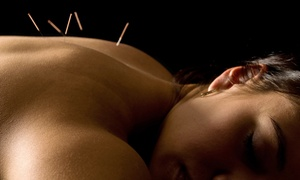Shakthi Health & Wellness Center: One or Three Acupuncture Treatments with Consultation at Shakthi Health & Wellness Center (Up to 78% Off)