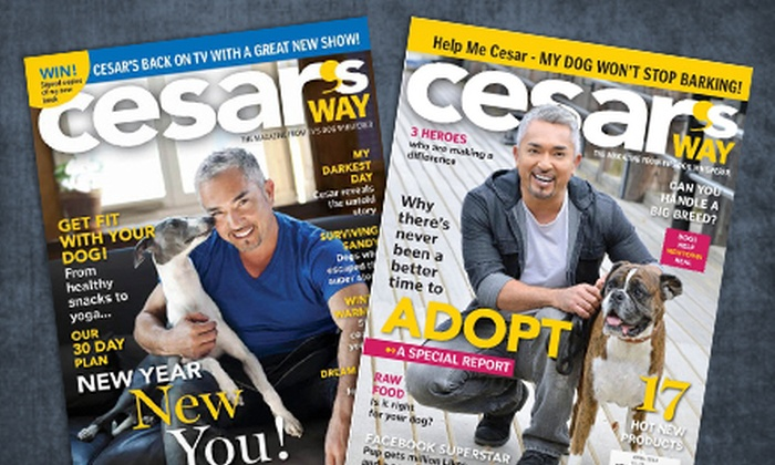 """Cesar's Way: One- or Two-Year Subscription to """"Cesar's Way"""" from Blue Dolphin Magazines (Half Off)"""