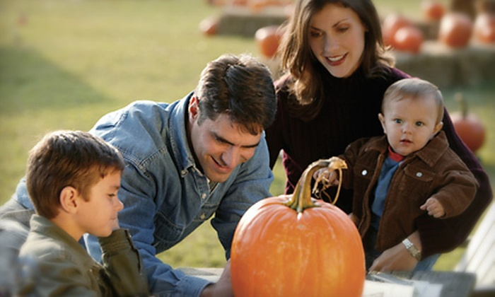 Pin Oak Farms - New Haven: Up to 30 Pounds of Pick-Your-Own Pumpkins or Hayride for Up to 15 at Pin Oak Farms (Up to 56% Off)