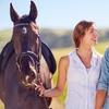 54% Off Temecula Wine Country Horseback Ride