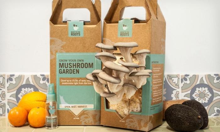 Mushroom Growing Kits 2-Pack: $39.99 for Mushroom Growing Kits 2-Pack ($48.50 List Price). Free Shipping.