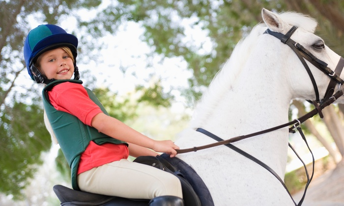 Louw Stables - Van Meter: $69 for Four Horseback-Riding Lessons for Children or Adults  ($140 Value)