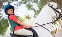 4 o 8 lezioni di equitazione per uno o 2 bambini dai 4 ai 12 anni (sconto fino a 80%)