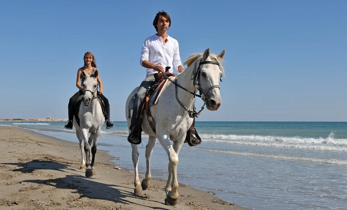 Beach Outride, Including Bubbly and Chocolates from R550 at Equestrian Centre Overstrand (Up to 60% Off)