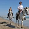 40% Off Horseback-Riding Session