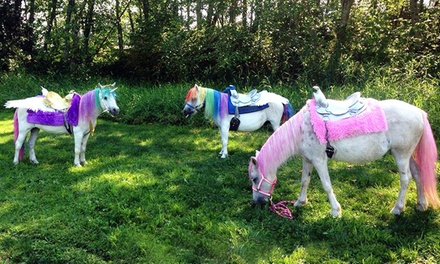 $50 for $100 Toward a Pony Party from Dreamland Ponies
