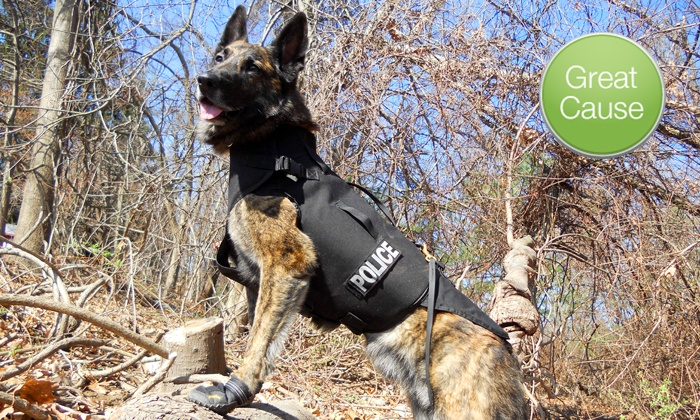 Vested Interest in K9s, Inc.: $10 Donation to Help Supply Bullet- and Stab-Protective Vests for Police Dogs