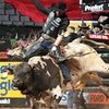 PBR: BlueDEF Tour — Up to 40% Off