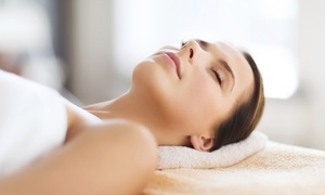 Tampa Beauty Therapies: Microcurrent Treatment or Facial Spa Package at Tampa Beauty Therapies (Up to 53% Off)