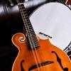 Baygrass Bluegrass Festival – Up to 50% Off Concert