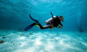 Aquatic Adventures of MI: One Scuba Class or Beginners' or Advanced Open-Water Course at Aquatic Adventures of Michigan (Up to 69% Off)