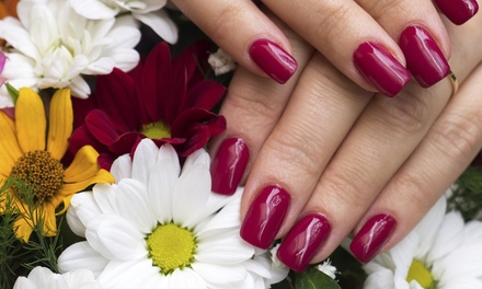 Up to 52% Off Mani-Pedis  at Navon's Hair Studio at Salons by JC