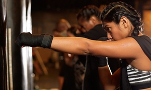 Voyage Martial Arts: One Month of Unlimited Boxing/Kickboxing Classes for One or Two People at Voyage Martial Arts (Up to 68% Off)