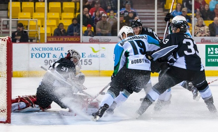 Alaska Aces Hockey Game for Two or Four at Sullivan Arena (Up to 54% Off). 12 Games Available.
