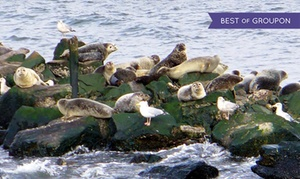American Princess Cruises: Weekend Seal & Bird Watching Adventure Cruise from American Princess Cruises (Up to 50% Off)