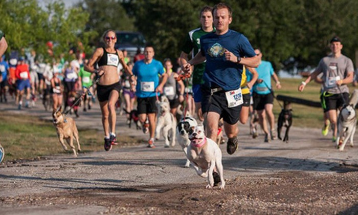 Petco 5K9 Walk Run Wag - San Rafael: Entry to 1- or 3.1-Mile Petco 5K9 Walk Run Wag With or Without Your Dog on August 4 (Up to 52% Off)