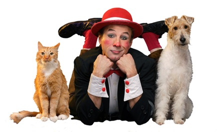 Popovich Comedy Pet Theater at V Theater (Up to 65% Off)