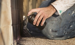 Professional Pest Control: $84 for $175 Worth of Pest-Control Services — Profesional Pest Control
