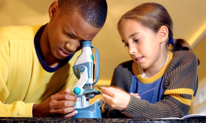 The Scientastic Institute - Wellington Country Plaza: $29 for a Kids' Science Camp ($65 Value)