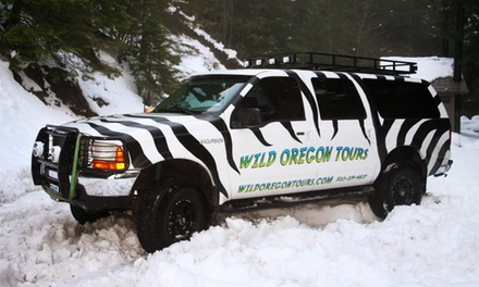 Drive Through the Mountains or Waterfalls Tour for Four or Six from Wild Oregon Tours (Up to 52% Off)