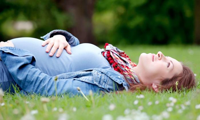 Breastfeeding Success Company - Casa De Luz: $17 for Prenatal Breastfeeding Class for Two at Breastfeeding Success Company ($40 Value)