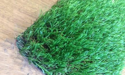 Easy Lawn Company Bishopbriggs Glasgow