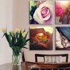 "Canvas Prints Available in Sizes 12""x12"", 16""x16"""