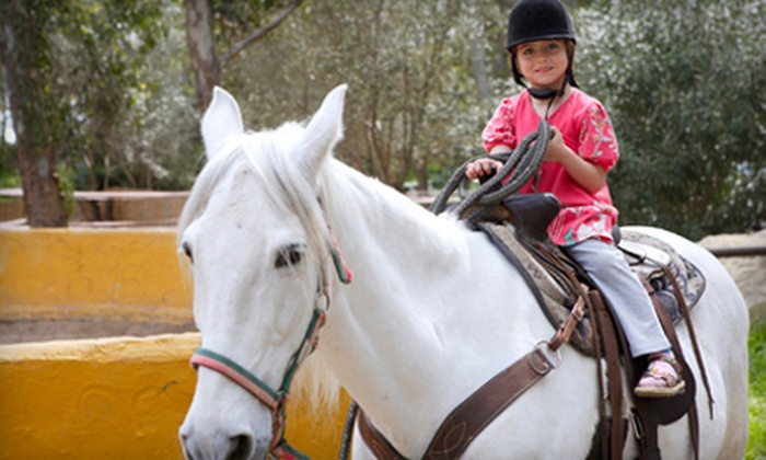 Driftwood Stable - Wauconda: One or Two 30-Minute Private Horseback-Riding Lessons at Driftwood Stable (Half Off)